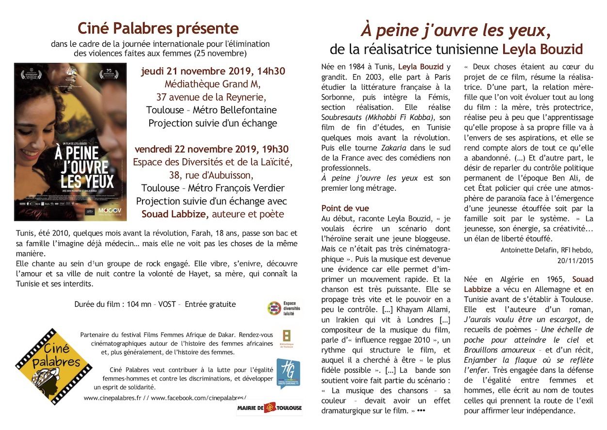 https://cinepalabres.fr/wp-content/uploads/2019/11/Flyer-APJOLY-RoVo.jpg